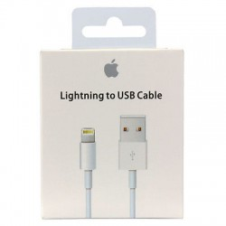 Câble Lightning vers USB (1 m) Origine